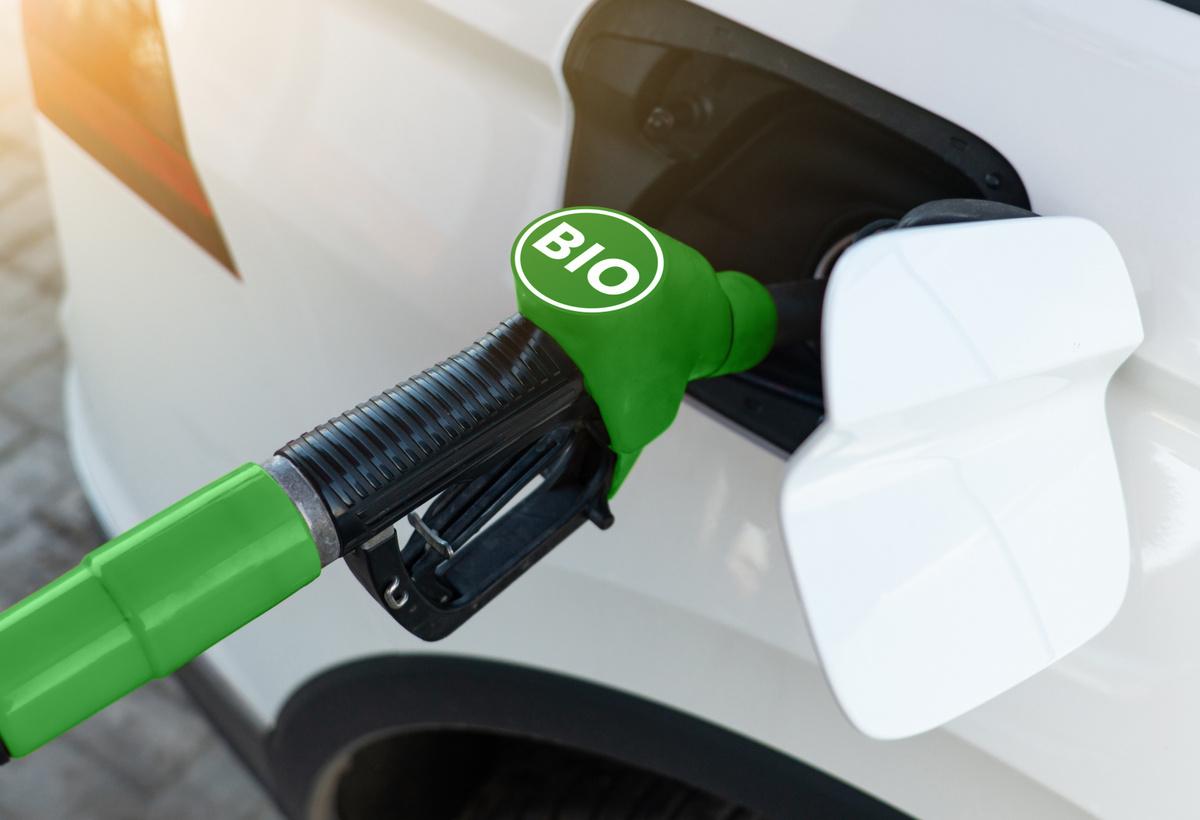 Bioethanol Enhancement