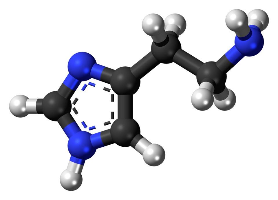 Pan-Anti-Histamine