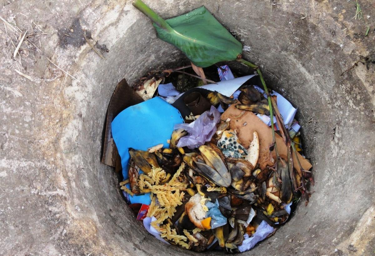 Bioplastics from Organic Fraction of MSW