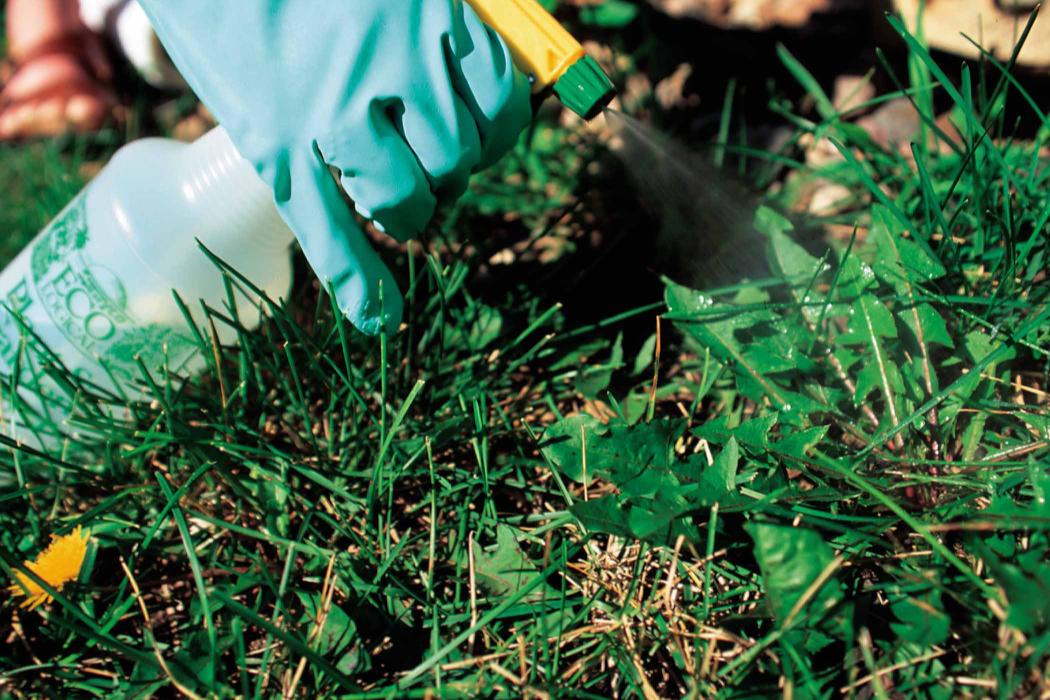 Novel Herbicide Technology