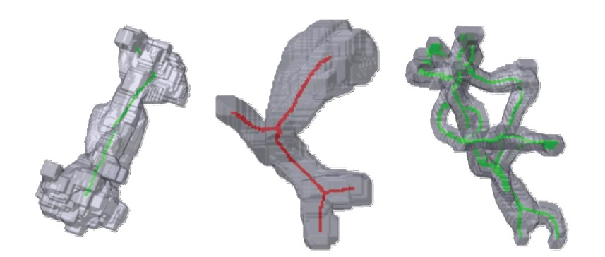Extracting Centerlines From Medical Imaging Data