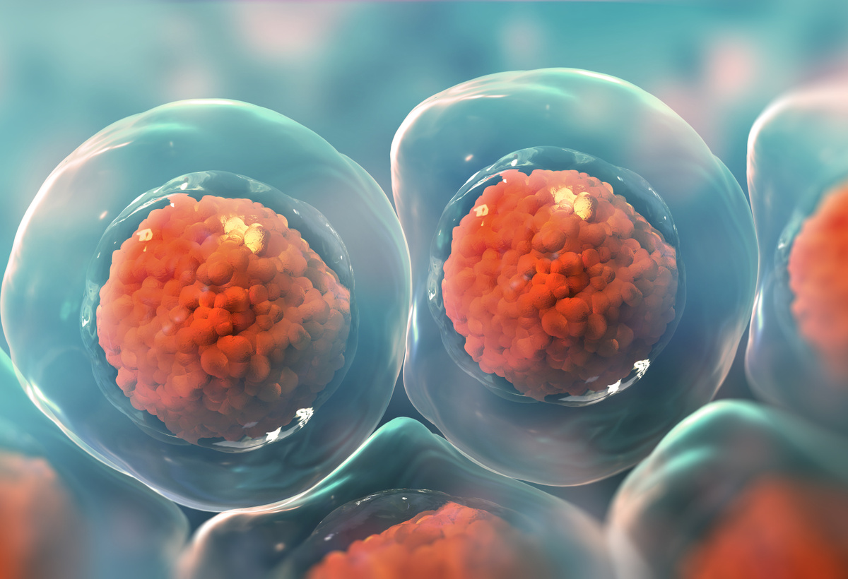 Engineered Extracellular Vesicles for Skin Care and Wound Healing