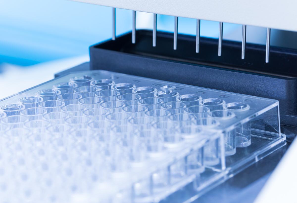 Double-SIS: A Novel Methodology for Protein Quantitation