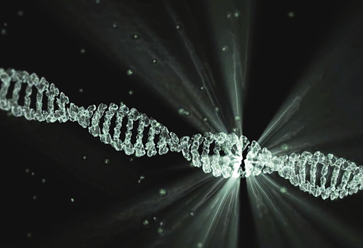 Novel NGS-Based Liquid Biopsy Diagnostic for Cancer Detection: mDETECT