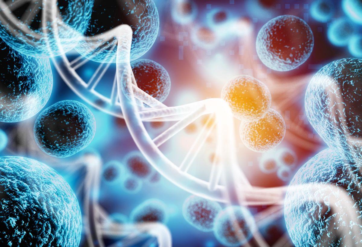 A Novel Biocompatible Transfection Agent