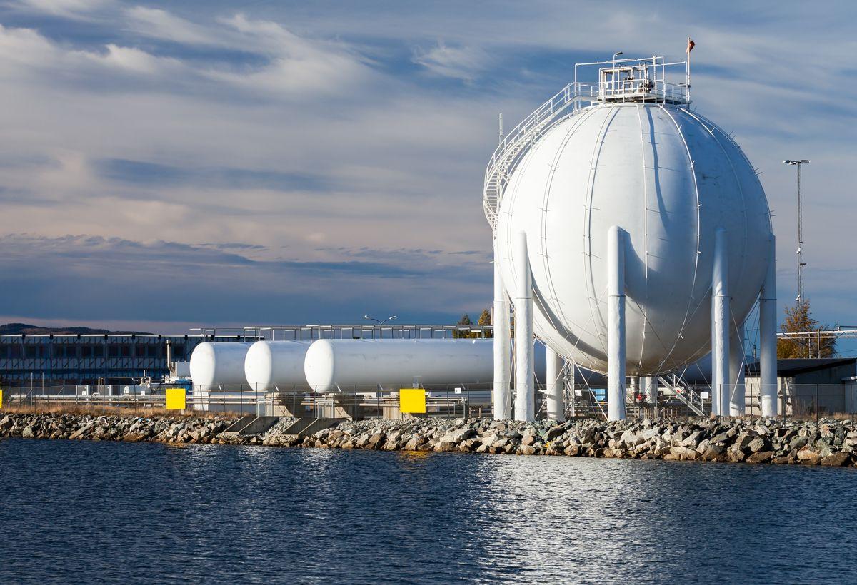 Fluorinated Metal-Organic Frameworks for Gas Storage