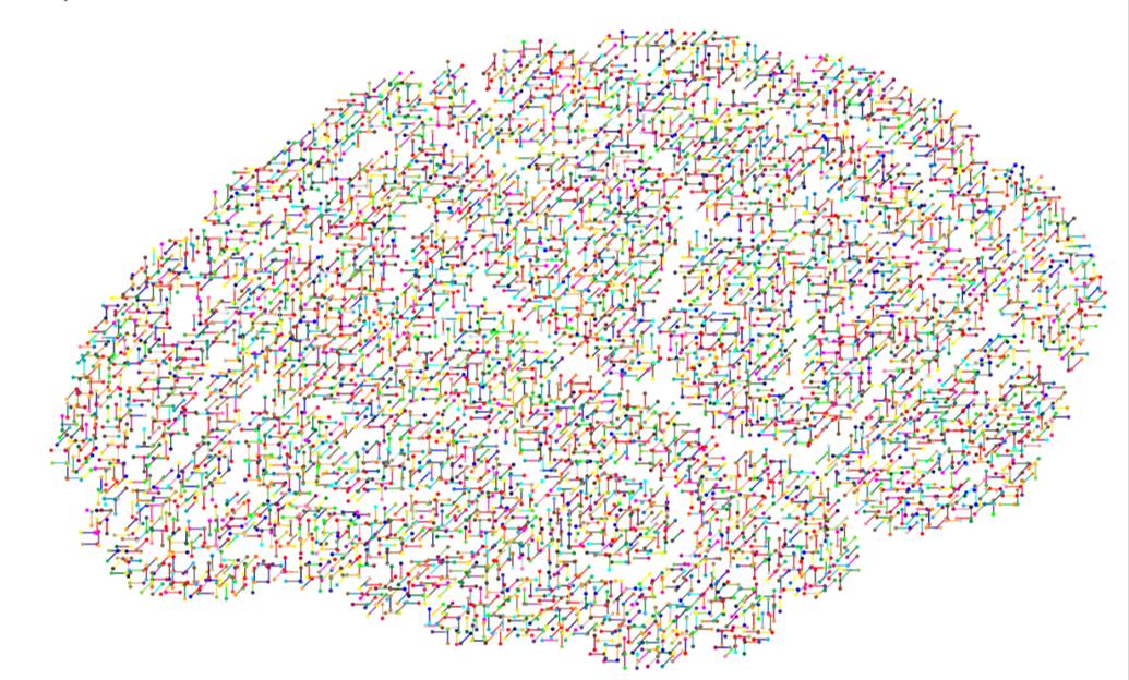 Micmac Computational Method for Characterization of Microglia Alterations
