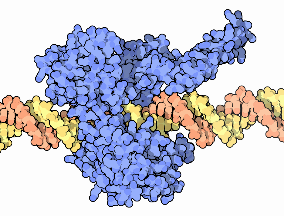 Bacterial Topoisomerase I Inhibitors with Antibacterial Activity
