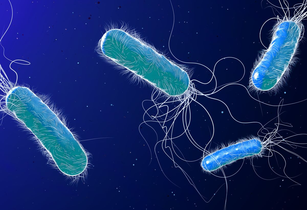 Non-Antibiotic Antimicrobial for Treatment of Respiratory Infections