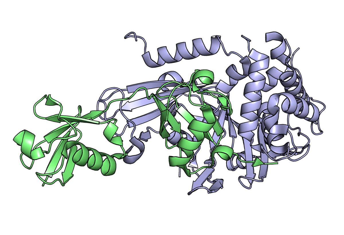 Latent Active Site Probes to Study Endogenous Enzyme Activity