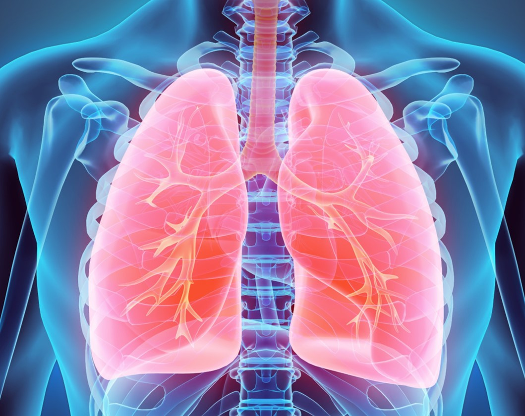Seeking Druggable Targets in Progressive Fibrosing Interstitial Lung Disease or Pulmonary Hypertension