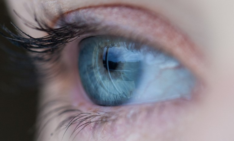 Seeking Neuroprotective Agents for Retinal and Ocular Conditions