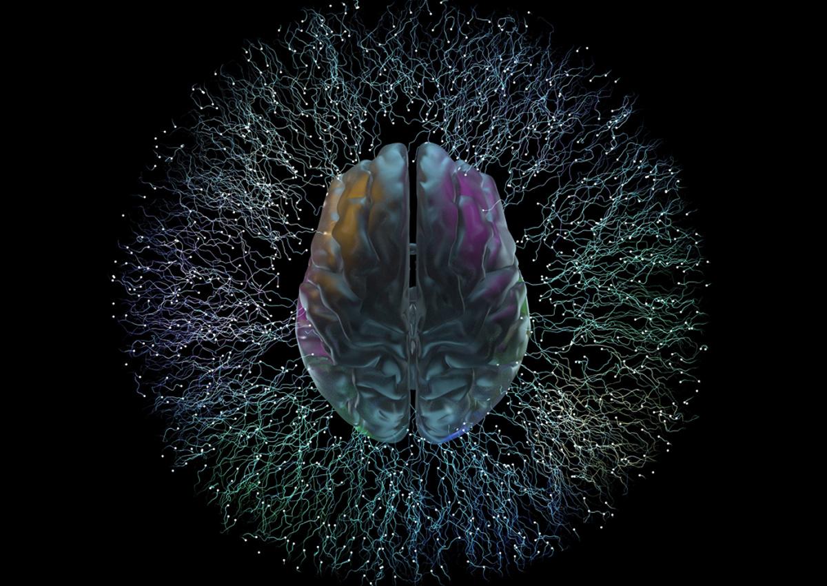 Seeking Phenotypic Cellular Assays Relating to Neuroscience