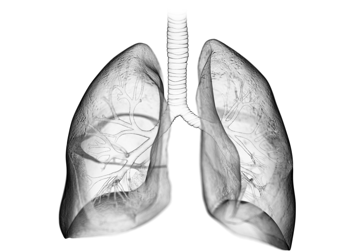 Seeking Therapeutics and Vaccine Innovations for Respiratory Infections
