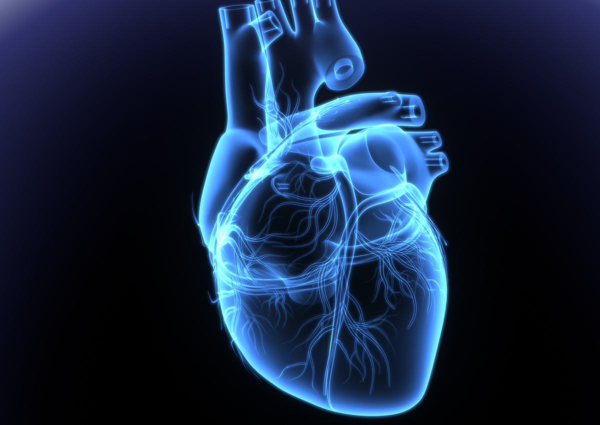 Seeking Novel Drug Candidates and Targets for Cardiovascular Disorders