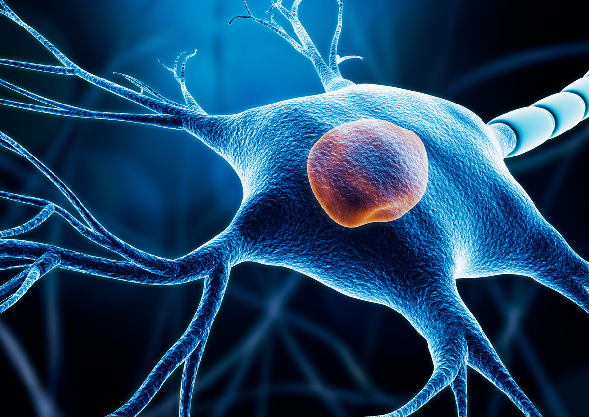 Neuron and Axon Regeneration in Cases of Glial Scarring in Chronic Neurodegeneration
